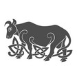 ancient celtic mythological symbol of bull vector image
