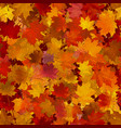 autumn maple leaves seamless background vector image vector image