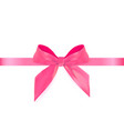 decorative pink bow with blue ribbon isolated on vector image vector image