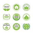 ecological leaves labels icons set vector image vector image