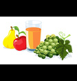 fruit and juice vector image vector image