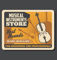 music store professional musical instruments vector image