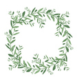 Watercolor olive wreath vector image vector image