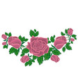 ash-pink roses in cartoon style vector image