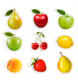 big collection of labels with fruits vector image vector image