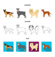 dog breeds cartoonoutlineflat icons in set vector image vector image