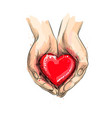 female hands giving red heart from a splash of vector image
