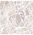 Lace fabric seamless pattern vector image vector image