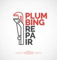 Plumbing repair vector image
