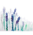 Watercolor Pattern of Lavender Flowers vector image