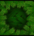 christmas tree branches frame vector image vector image