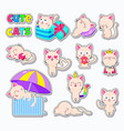 collection of cute cats doodle character vector image vector image