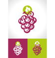 Grape and Vine Icon vector image vector image