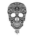 hand drawn floral hand drawn patterned skull vector image