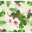 seamless texture with tropical flowers set vector image vector image