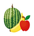 watermelon banana and apple fruits vector image vector image