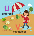 alphabet letter u-umbrella v-vegetables vector image vector image