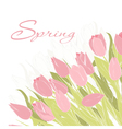 Card with tulip flowers vector image