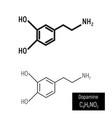 dopamine molecule structure design vector image