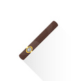 flat cuban cigar icon vector image vector image