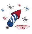 Independence day Usa icon Celebration concept vector image vector image