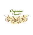 organic food badge design vector image vector image