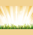 summer sunshine background with grass leaves vector image
