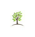 tree abstract botany ecology logo vector image