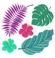 Tropical leaves hand drawn isolated leaves