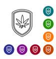 grey line shield and marijuana or cannabis leaf vector image vector image