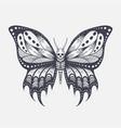 skull butterfly vector image vector image
