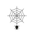black spider on the spider web icon helloween vector image