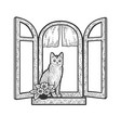 cat in windows sketch vector image vector image