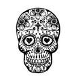 day dead skull sketch vector image