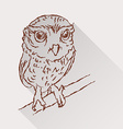 Drawing of little owl with long shadow vector image vector image