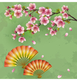 Vintage Japanese background with sakura and fans vector image