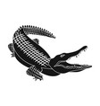 Crocodile dangerous predator reptile nile