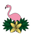 flamingo bird flower tropical summer vector image