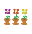 Isolated collection of cute flowers in pot vector image vector image