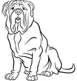 neapolitan mastiff dog cartoon for coloring vector image vector image