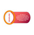 sale tag set of circle flash sticker offer banner vector image vector image