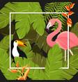 tropical flowers background summer design vector image