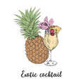 cocktail sketch pineapple sketch cocktails vector image
