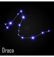 Draco Constellation with Beautiful Bright Stars on vector image vector image