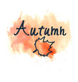 hand written sign autumn and maple leaf contour vector image