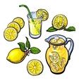 lemonade with lemon in a transparent jug vector image vector image