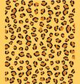 jaguar leopard cheetah skin texture safari style vector image