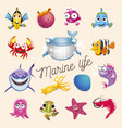 marine life cartoon fun sea and ocean animals set vector image