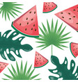 tropical fruits design vector image