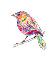 a bird on a branch watercolor vector image